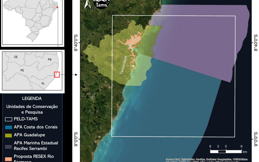 MCTIC abraça ações de pesquisa e exploração sustentável do mar